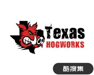 德克萨斯州网络公司标志