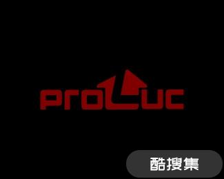 Proluc建筑公司logo